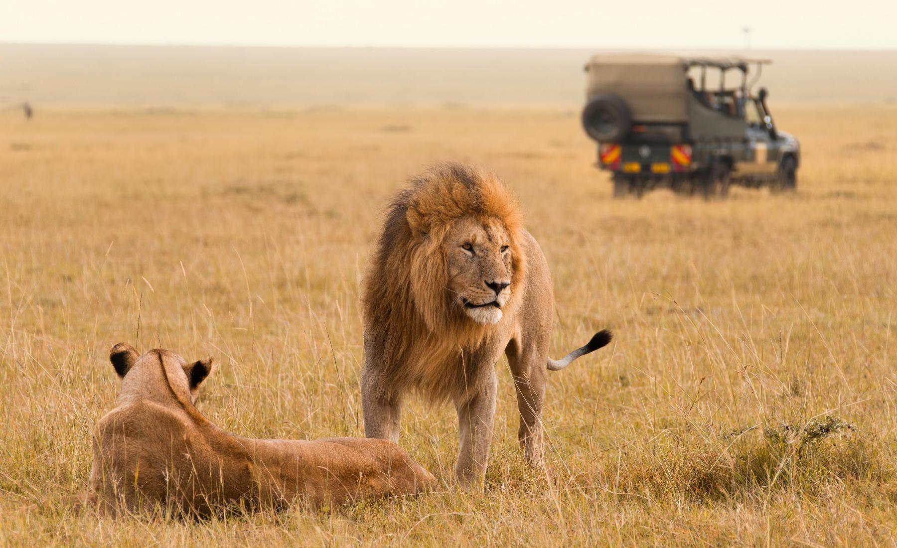 Bijzondere bezienswaardigheden in Kenia