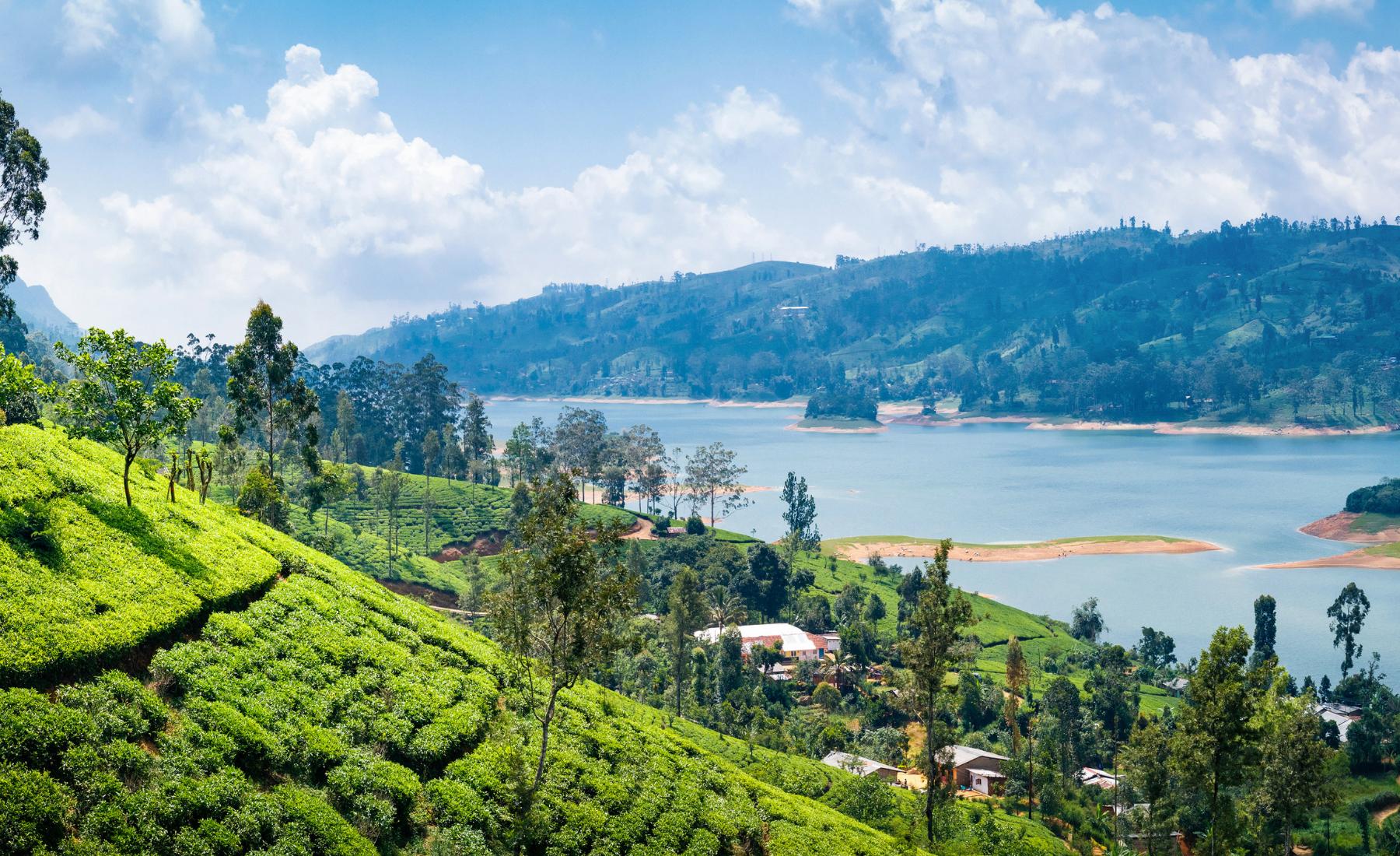Alles over bijzondere activiteiten in Sri Lanka