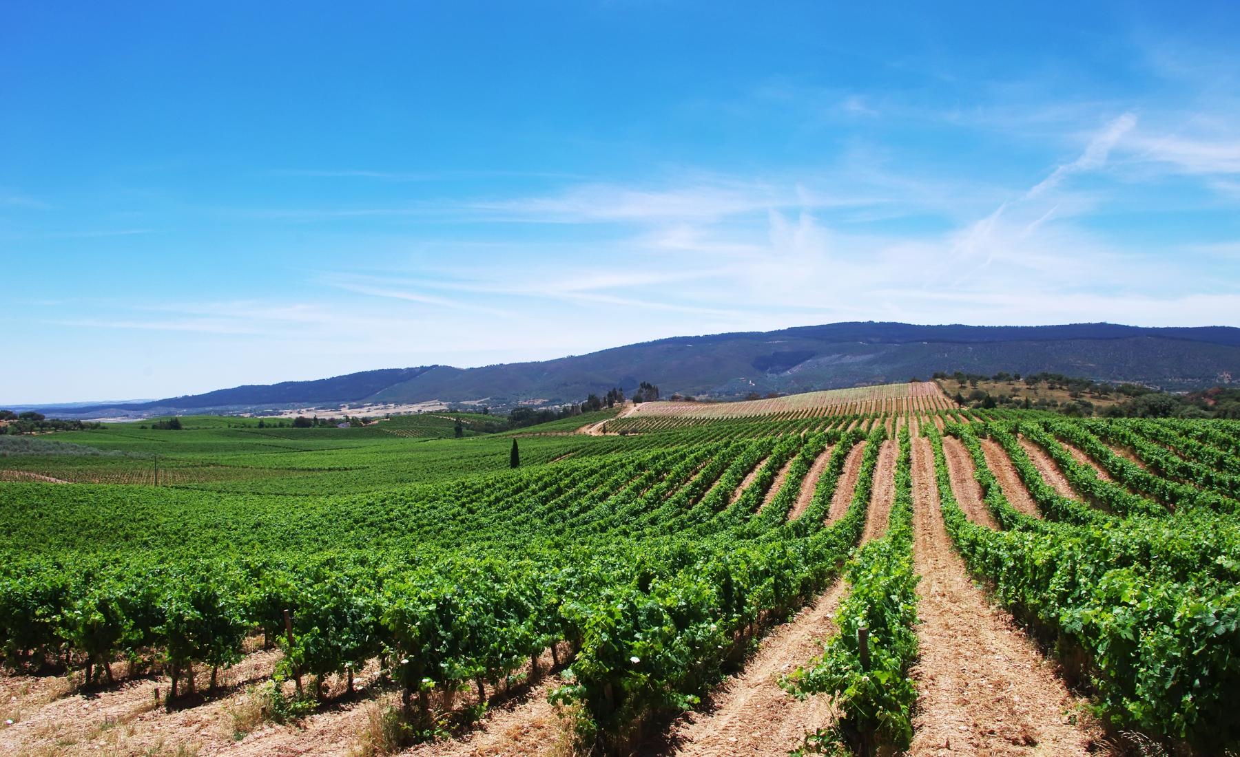 Travel guide Alentejo – Verborgen parels in Portugal
